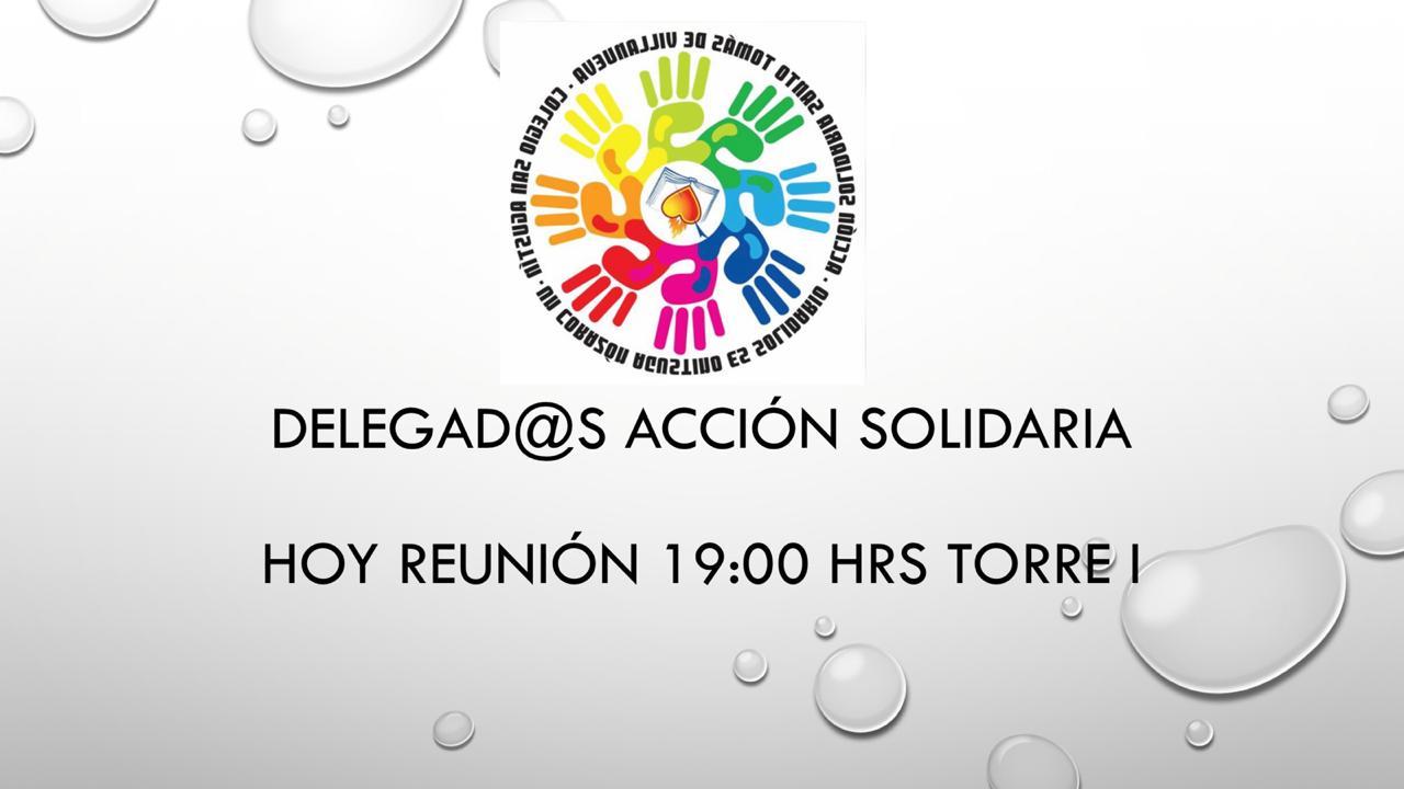 Reunión Delegados Acción Solidaria 30-5-19