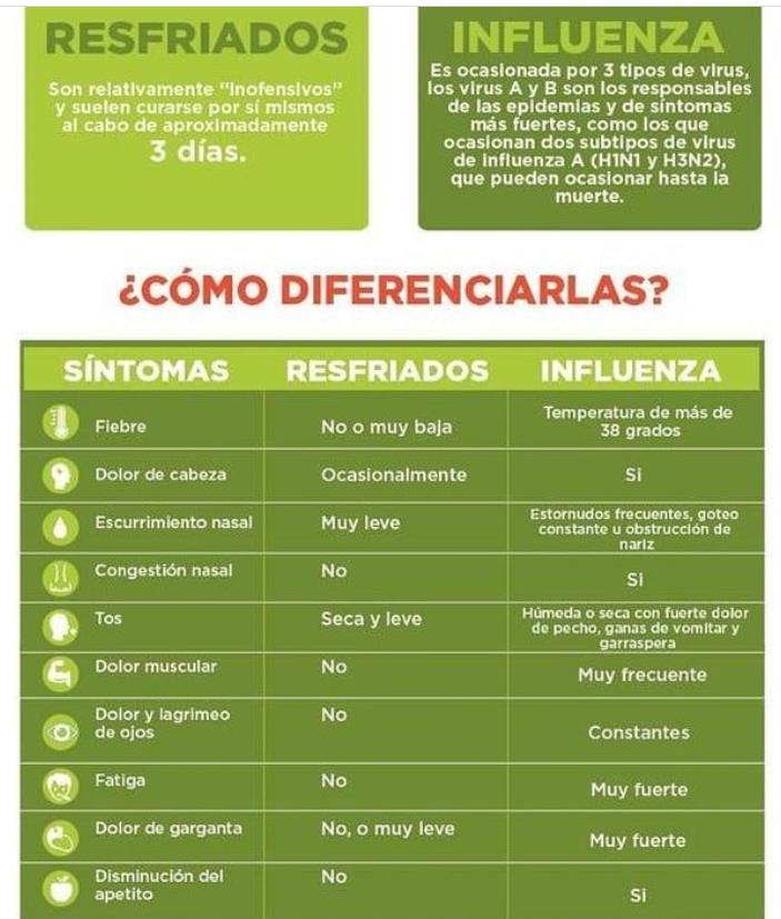 Información Diferencias Entre Resfrío E Influenza