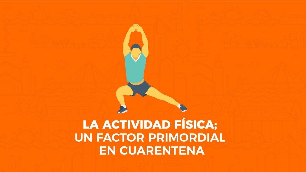 Material Educativo Actividad Física En Cuarentena